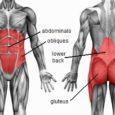 <p>Core exercises train the muscles in your pelvis, lower back, hips and abdomen to work in harmony. This leads to better balance and stability, whether on the playing field or in daily activities.</p>